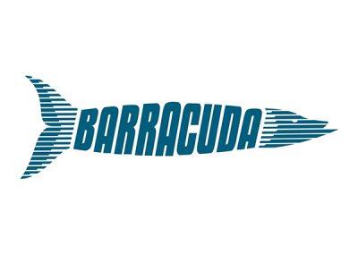 Marca Barracuda